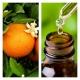 Aceite Esencial de Naranja Dulce (30ml)