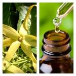 Aceite Esencial de Ylang Ylang (Completo)