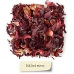 Hibisco Flores