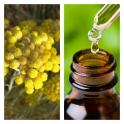 Aceite Esencial de Helicriso (Absoluto Diluido)