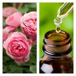 Aceite Esencial de Rosa Otto (Absoluto Diluido)