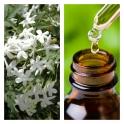 Aceite Esencial de Jazmín (Absoluto Diluido)