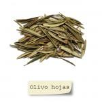 Olivo Hojas