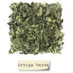 Ortiga Verde Hojas