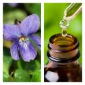 Aceite Esencial de Violeta (Absoluto Diluido)