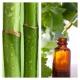 Extracto de Brotes de Bambú BIO