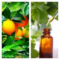 Extracto de Naranja Amarga BIO
