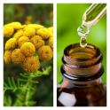 Aceite Esencial de Tanaceto BIO (Hierba Lombriguera)